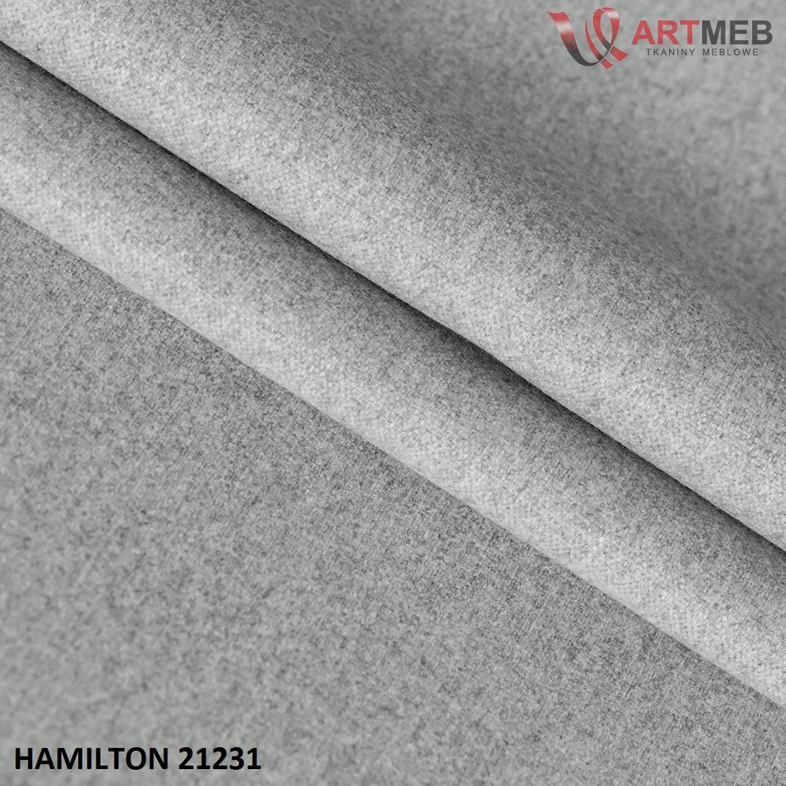 Hamilton-21231.jpg